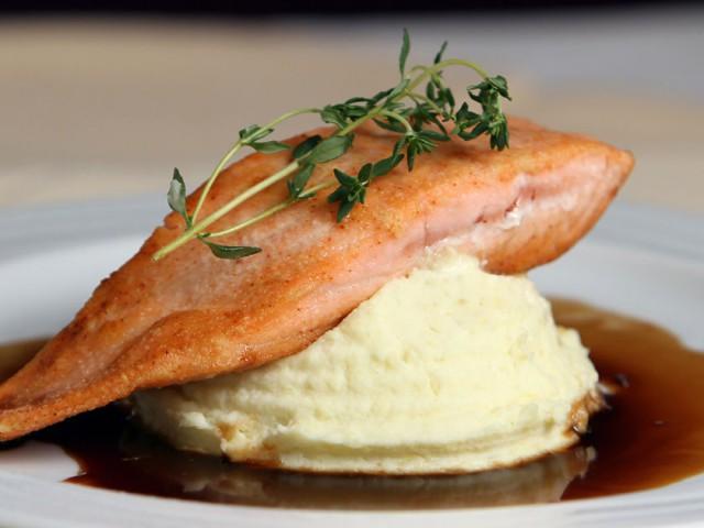 gastronomy-salmon