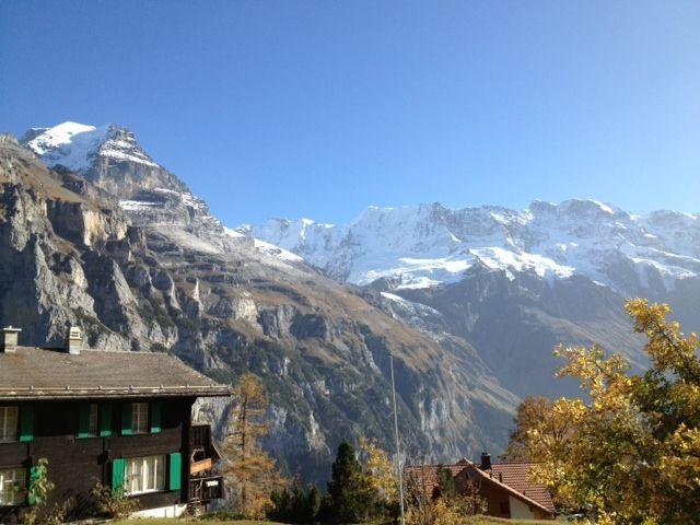 http://hoteljungfrau.ch/wp-content/uploads/2014/09/mosca-2.jpg